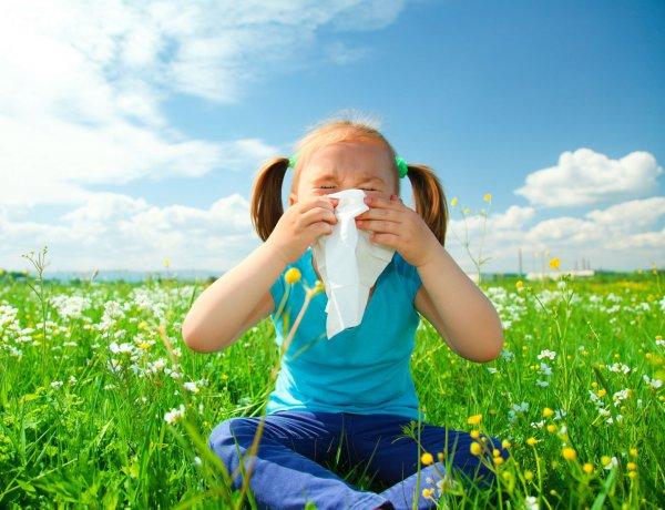 Хотите вылечить аллергию - Занимайтесь сельским хозяйством