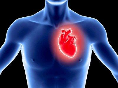 Инфаркт миокарда Симптомы и течение Распознавание