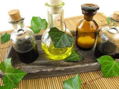 Механизм воздействия растительных ядов на онкологическую опухоль.